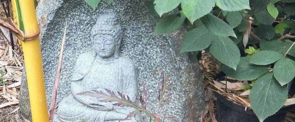 Buddha Stein. Bambus-Baumschule Darmstadt. Spezialgärtnerei Ulrich Willumeit. Baumschule Darmstadt Eberstadt